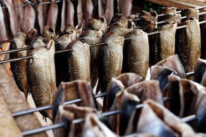 Omega 3/60 Fish