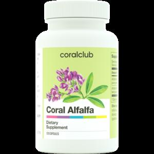Coral Alfalfa