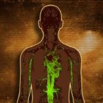 Perché è importante pulire il nostro organismo?
