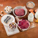 Incidenza del deficit di B12 nei vegetariani