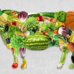 Carenza di B12 nei vegetariani e disturbi cardiovascolari