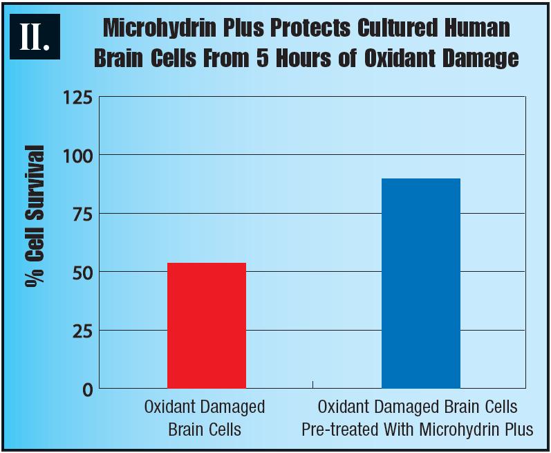 Microhydrin Plus 2